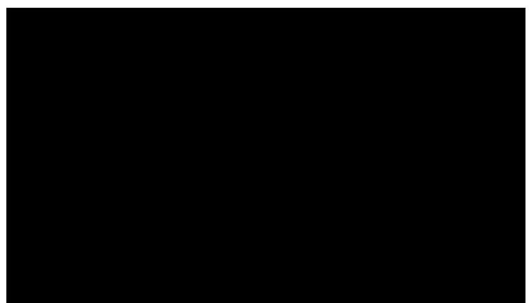 etapas-ciclo-experiencia
