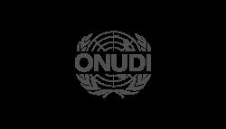 logo-onudi-v2